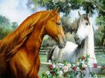 More-horse-wallpapers-horses-15705283-1024-768